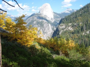 View of Half-Dome along the Panorama Trail