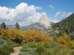 Half-Dome along the Panorama Trail